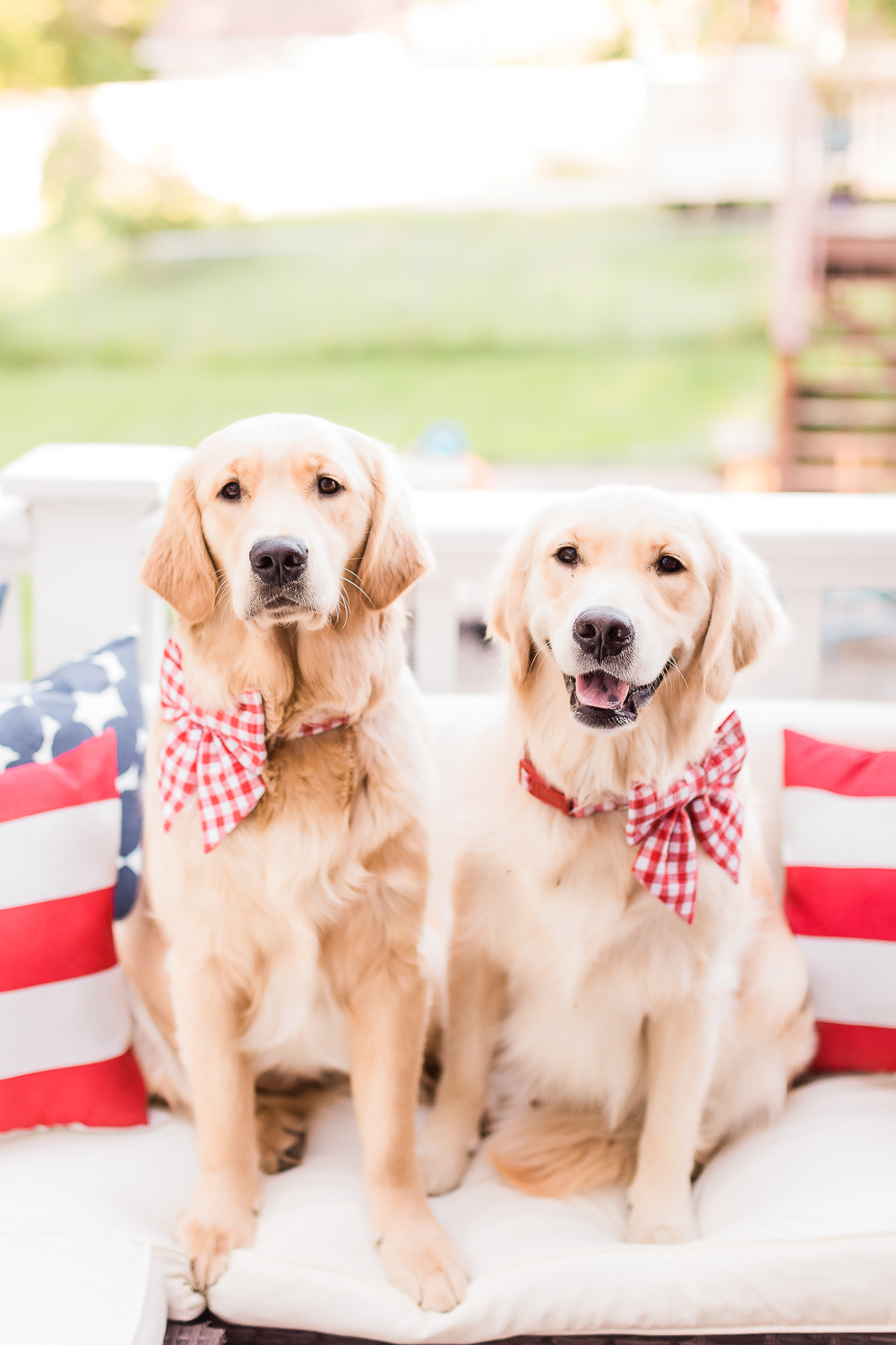 4th of July golden retrievers, 4th of July puppies, red gingham dog bows and collars, Currently Obsessed: Cute Female Dog Bows for Large Breeds by popular southern lifestyle blogger and golden retriever dog mom Stephanie Ziajka from Diary of a Debutante, how to make dog bows stay in, designer dog bows, female dog bows, 4th of July dog bows, cute dog bows for large breeds