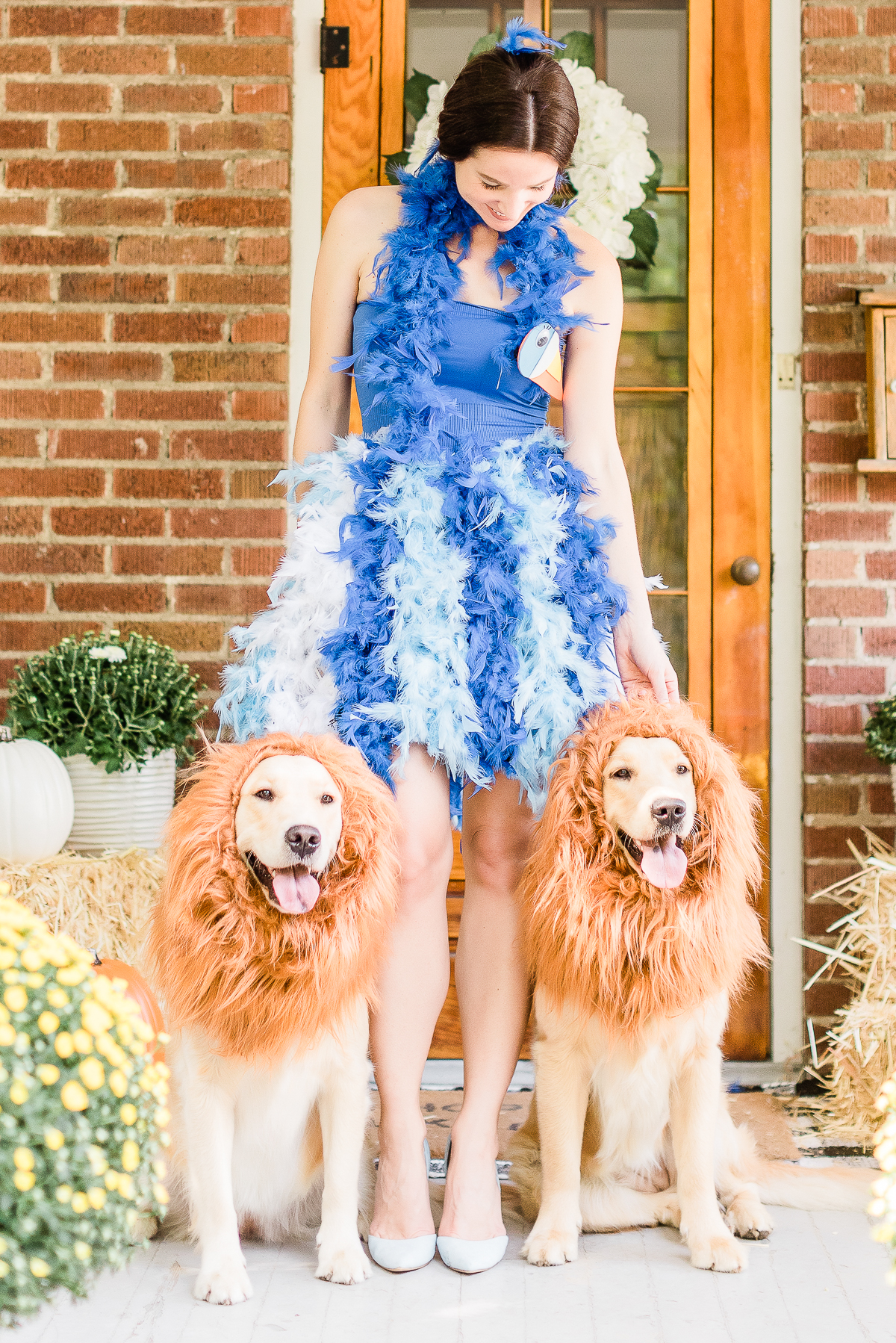 Diy Lion King Family Costume Tutorial Diary Of A Debutante