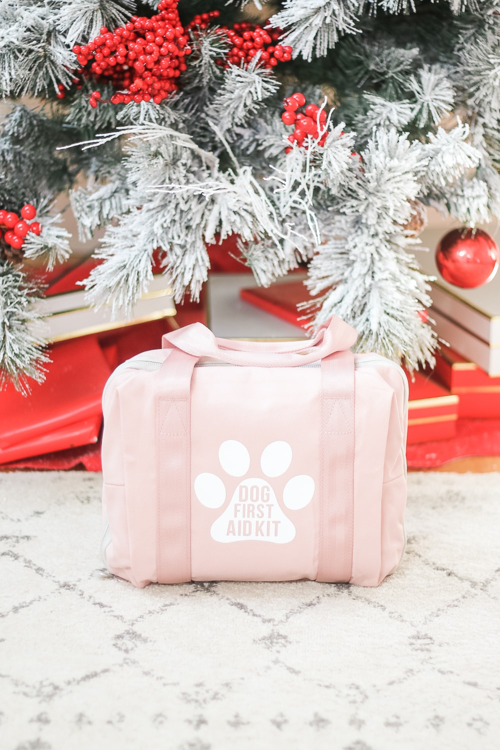 Southern blogger Stephanie Ziajka shows how to make your own DIY dog first aid kit on Diary of a Debutante