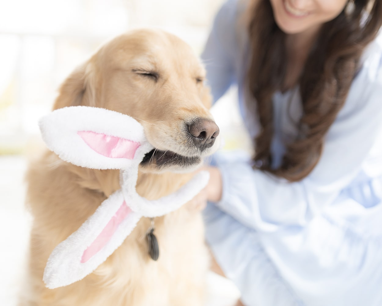 Blogger Stephanie Ziajka shares ideas for what to put in a dog Easter basket on Diary of a Debutante